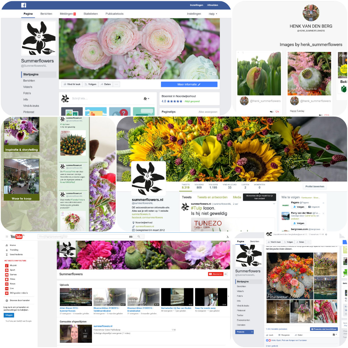 collage social media